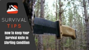 How to Keep Your Survival Knife in Sterling Condition