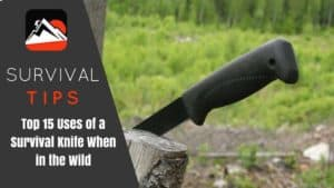Top 15 Uses of a Survival Knife When in the Wild