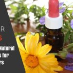 10 Power Natural Antibiotics Featured Image