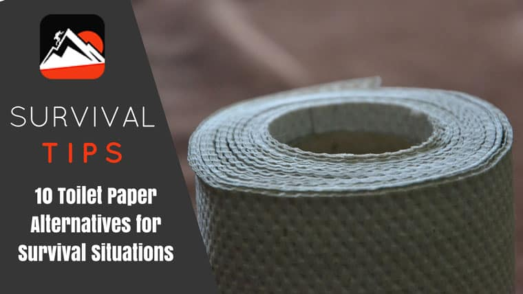 Survival Toilet Paper Alternatives