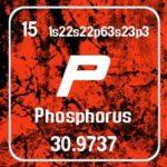 8.-phosphorus