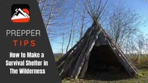 How to Build a Survival Shelter in The Wilderness: 10 Shelters to Consider