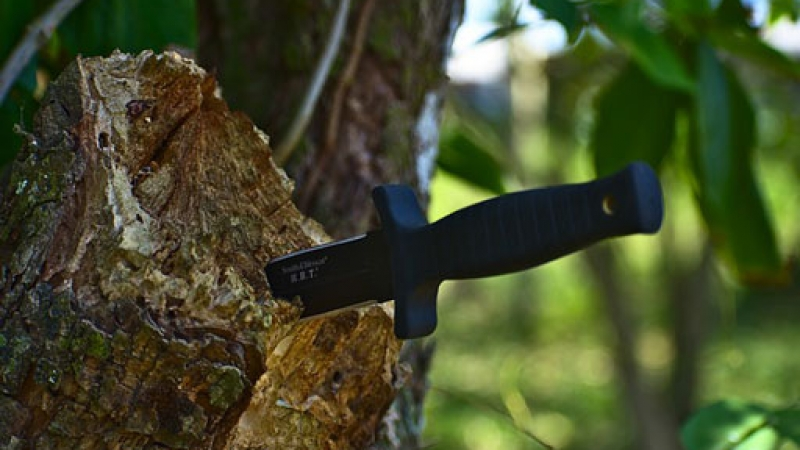 Top Fixed Blade Knives Under 75