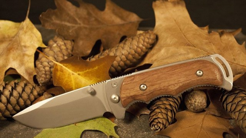 Top Knives for Bushcraft